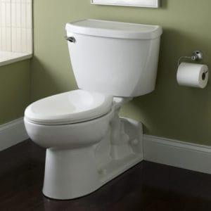 western-style toilets
