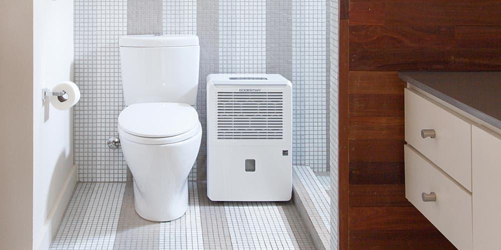 Best Dehumidifier For Bathrooms
