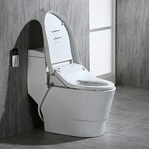 Best Heated Toilet Seat