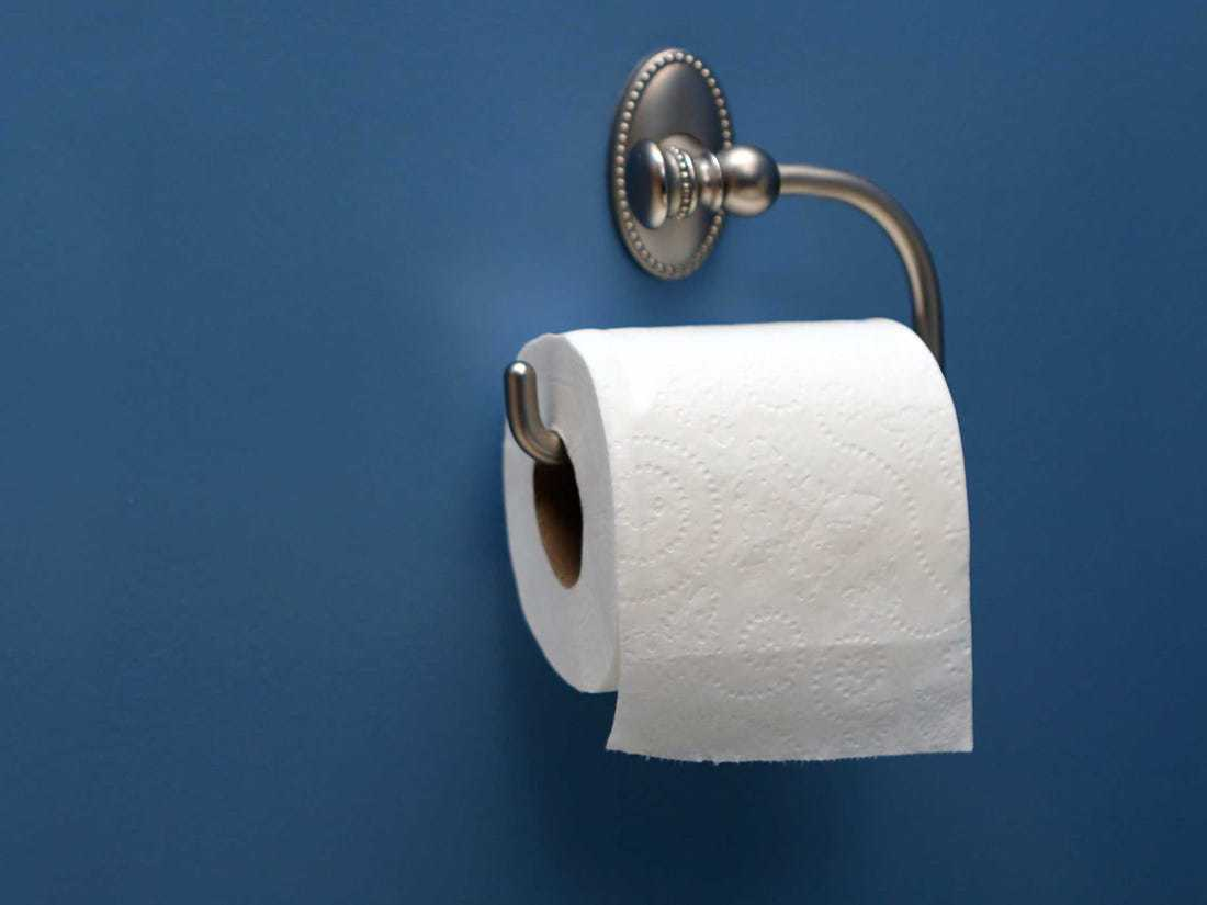 Best Toilet Paper 2020 Our Top Choices Reviewed