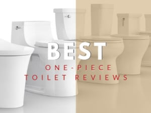 Best One-Piece Toilet
